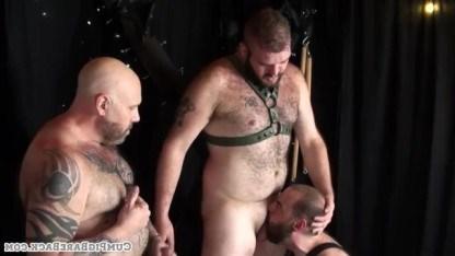 Татуированные толстяки трахают волосатого гея, перевязанного ремнями