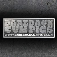 Гей-студия Bareback Cum Pigs